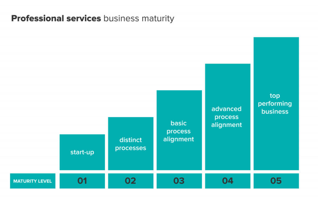 Levels of maturity for professional services businesses